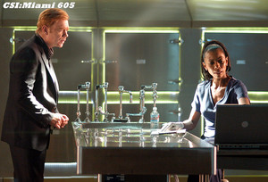 "CSI: Miami ~ 6.05 ""Deep Freeze"""