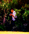 CSI: Miami ~ Raging Cannibal - all-csis fan art