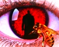 Candyman - horror-movies wallpaper