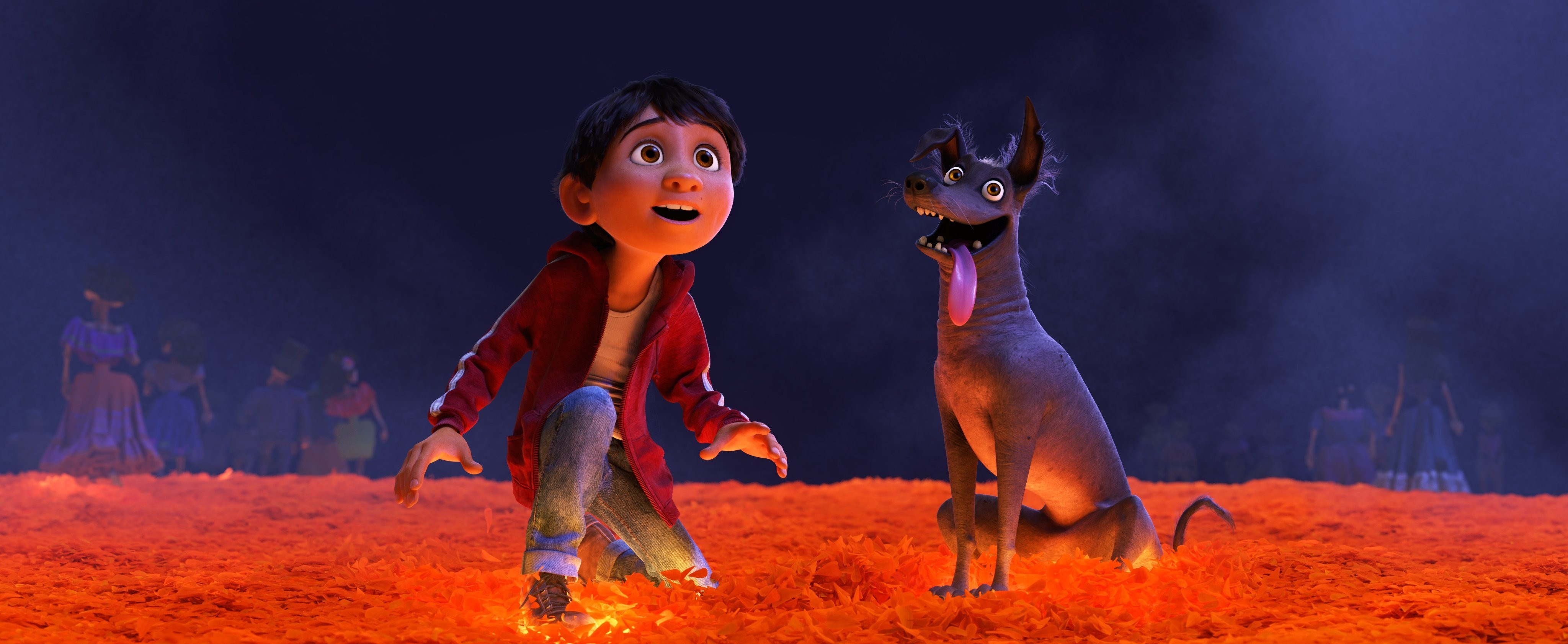 disney pixar coco images coco hd wallpaper and background photos