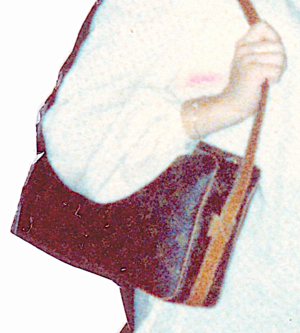 Debbie's pitaka