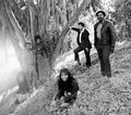 The Free Movement - classic-r-and-b-music photo