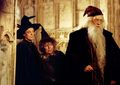 Harry Potter and the Chamber of Secrets  - maggie-smith photo