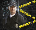 NCIS S16 - Mark Harmon    - ncis wallpaper