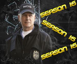 NCIS S16 - Mark Harmon