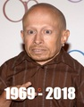 RIPVerneTroyer - random fan art