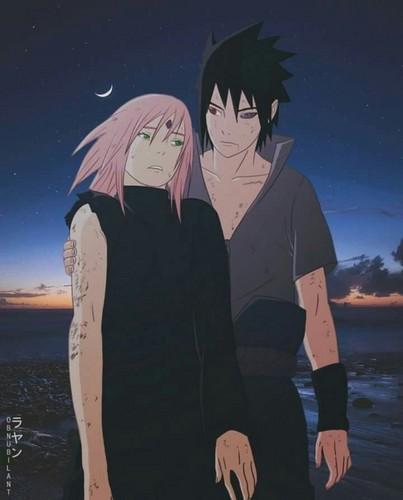 Sasuke dan Sakura kertas dinding titled Sasuke/Sakura🌺