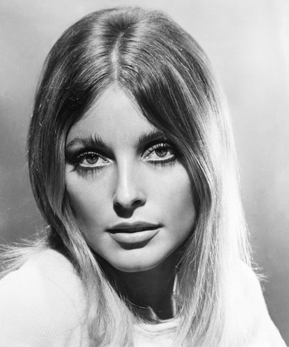 Celebrities Who Died Young Images Sharon Tate Hd Wallpaper