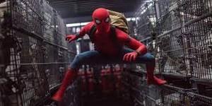 蜘蛛 man