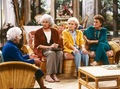 The Golden Girls - golden-girls-vs-designing-women photo