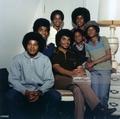 The Jackson Family  - the-jackson-5 photo