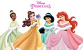 Winter Princesses - disney-princess photo