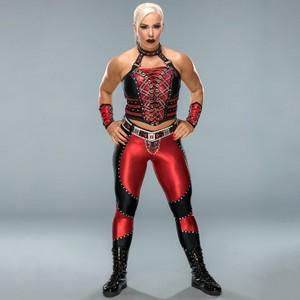 Wrestlemania 34 Ring Gear ~ Dana Brooke