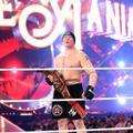 Wrestlemania 34 ~ Roman Reigns vs Brock Lesnar - wwe photo