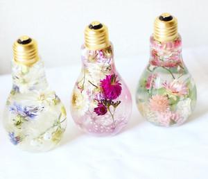 fiori ✿