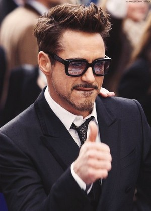robert downey jr The King