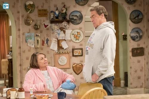 Roseanne fond d'écran called 10x08 - Netflix and Pill - Roseanne and Dan