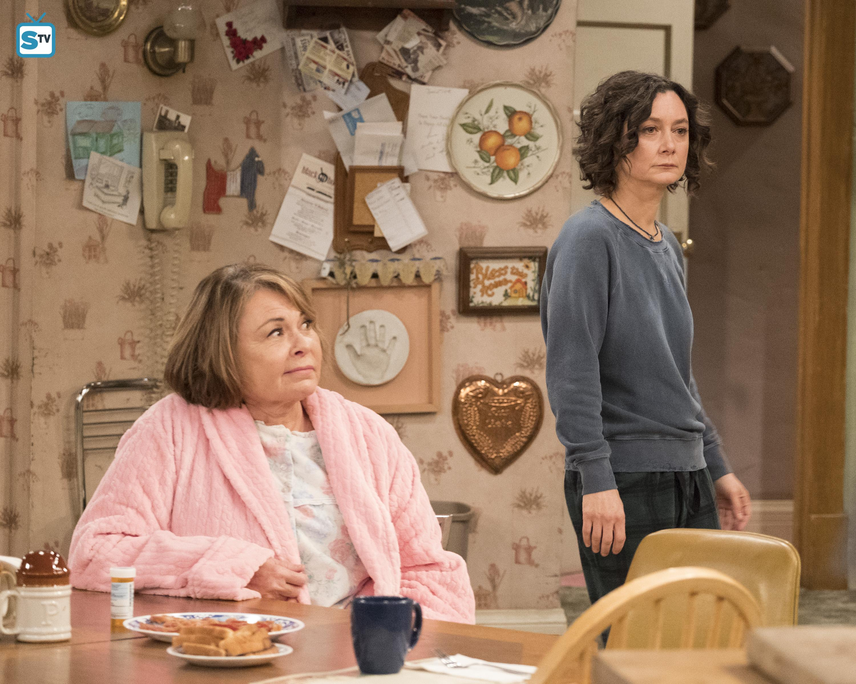 10x08 - Netflix and Pill - Roseanne and Darlene