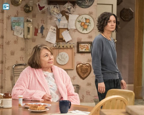 Roseanne wallpaper called  10x08 - Netflix and Pill - Roseanne and Darlene