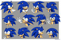 sonic s Expressions  - sonic-the-hedgehog photo