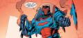 Batman Justice Incarnate member - dc-comics photo