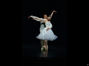 Beautiful Ballerina's