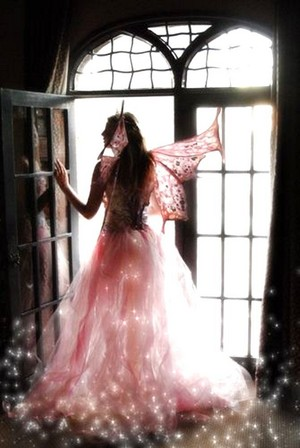 Beautiful Fairy In 담홍색, 핑크