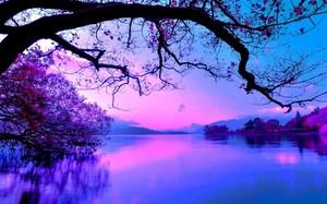 Beautiful Nature 💝