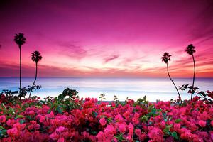 Beautiful Nature💝