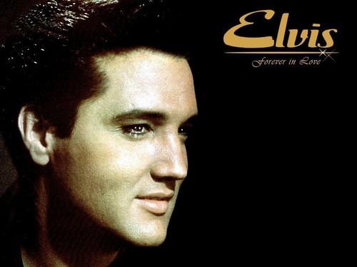 Elvis Presley hình nền titled Elvis hình nền ♥