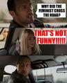Feminism - feminism photo