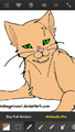 IMG 1490.PNG - warrior-cats photo