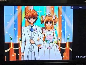 Kaito x Luchia Wedding