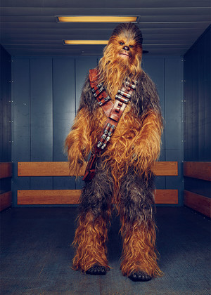 Solo: A bintang Wars Story Cast at Variety Photoshoot - Chewbacca