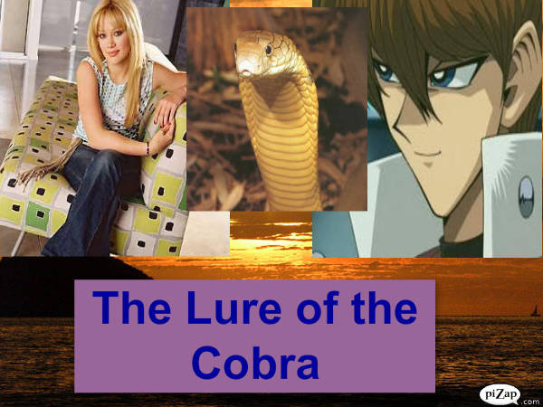The Lure of the cobra