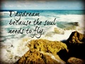 The Soul Needs To Fly - daydreaming wallpaper