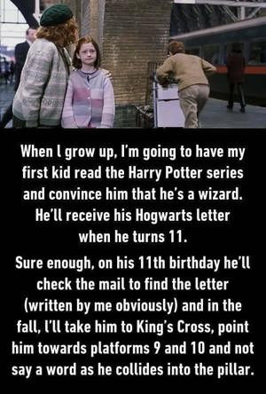 Trolling level: Harry Potter