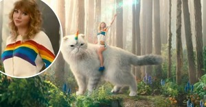 taylor nhanh, swift ride unicorn cat