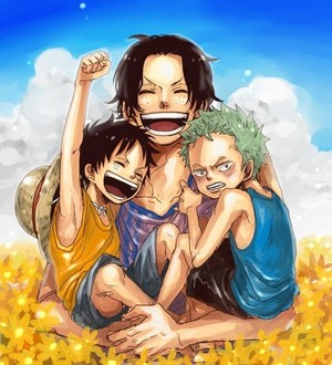 *Ace / Zoro / Luffy*