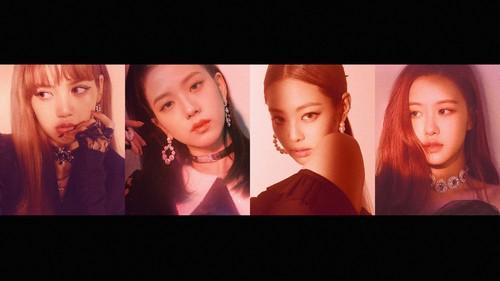 Black rosa Hintergrund called BLACKPINK