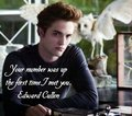 💙Edward Cullen💙 - edward-cullen photo