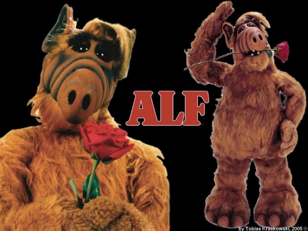 Alf Images 163994492 Alf Fonds Décran Hd Fond Décran And
