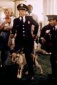 340176 full - police-academy photo