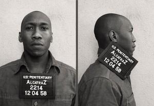 Alcatraz Mugshot: Clarence Montgomery