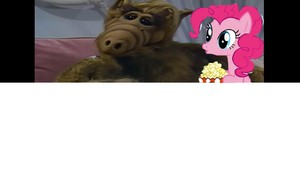Alf and Pinkie Pie ate the popcorn.JPG