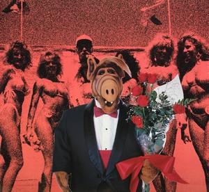 Alf calendar laser time 5