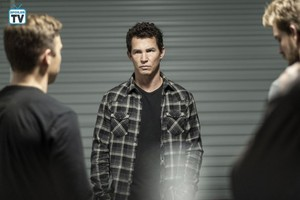 "Animal Kingdom ""Incoming"" (3x08) promotional picture"