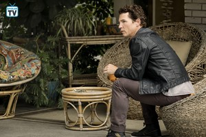 "Animal Kingdom ""Off the Tit"" (3x10) pomotional picture"