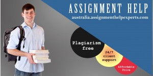 Assignment Help Example