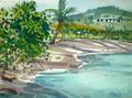 Beaches Of St. Croix